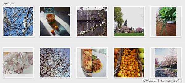 instagramApril2014(1)