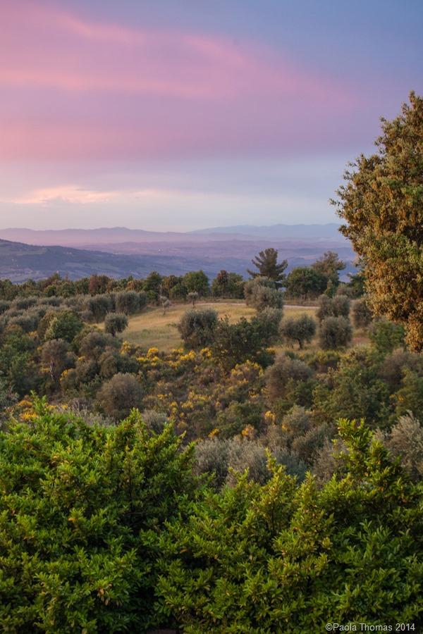 tuscanlandscapes-10