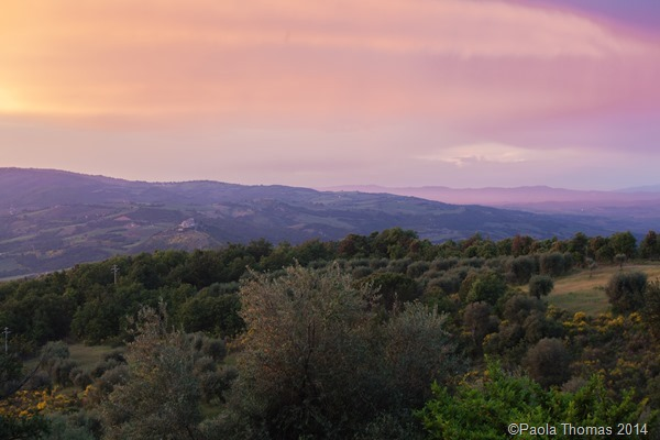 Tuscan Landscapes - Photography by www.paolathomas.com