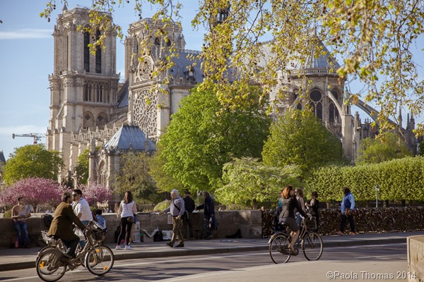 Springtime in Paris, photography by www.paolathomas.com