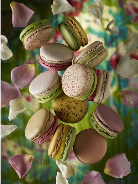 les jardins macarons by pierre herme mirror mirror. Black Bedroom Furniture Sets. Home Design Ideas