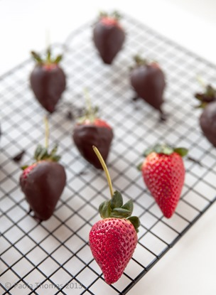 chocolatedippedstrawberries-6